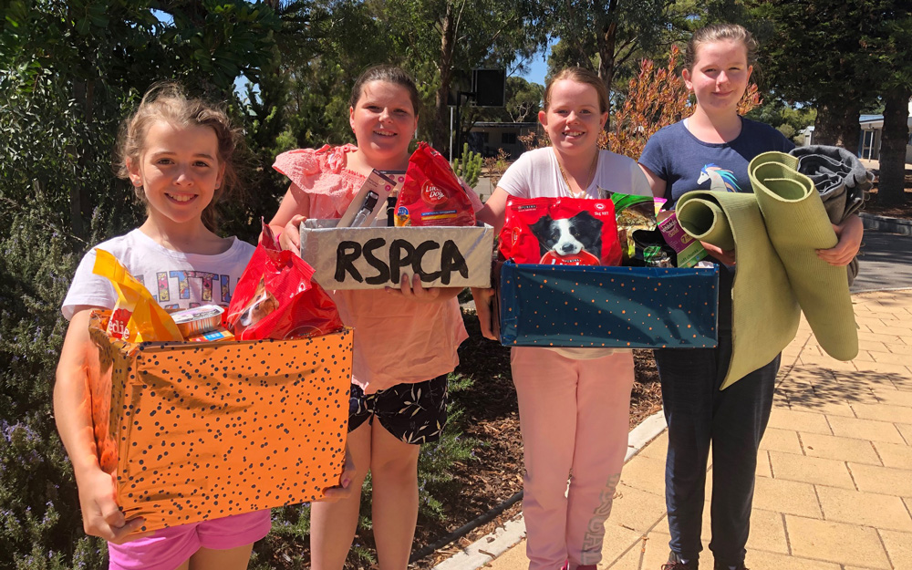 Gold coin fundraiser and donation drive to support RSPCA a big achievement