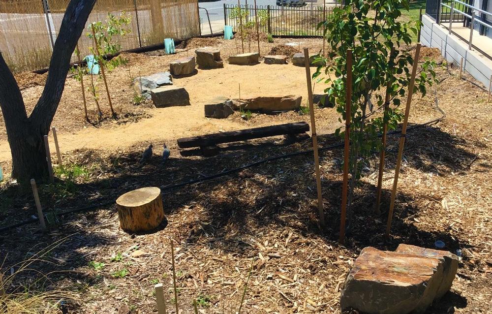 Interactive Bush Tucker Garden