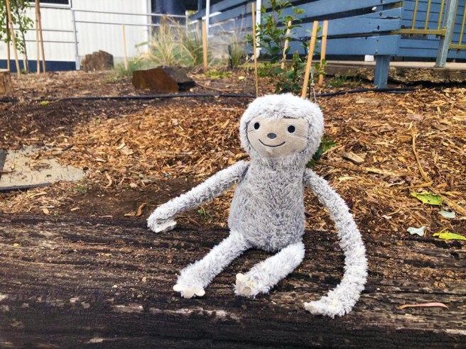 The Happy Adventures of Sammy the Sloth